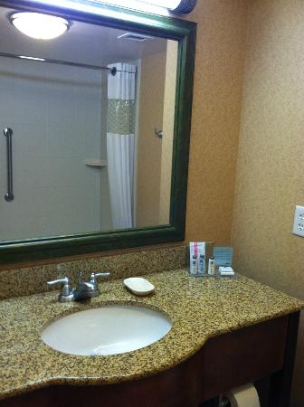 Hampton Inn & Suites Poughkeepsie: Bathroom