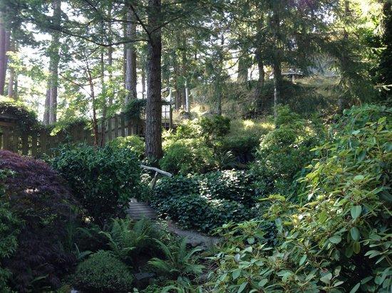 Hummingbird Hill Bed & Breakfast : The front garden