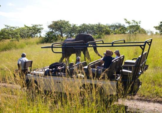 Ulusaba Safari Lodge: Ulusaba game drives