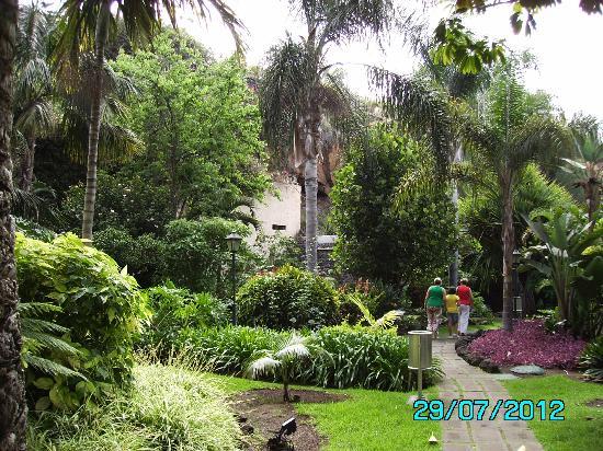 Foto de diverhotel tenerife spa garden puerto de la for Jardin tropical tenerife tripadvisor