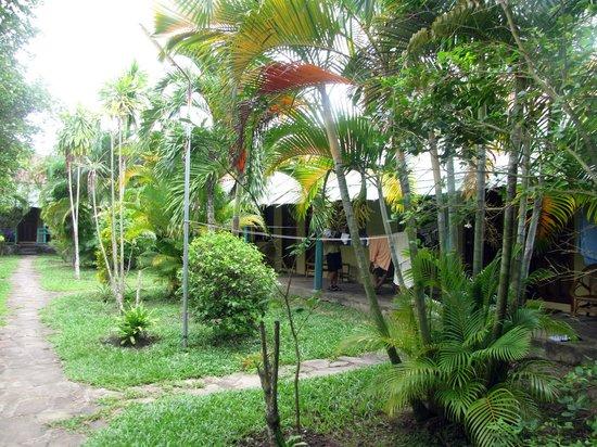 Makara Guesthouse: the inner area