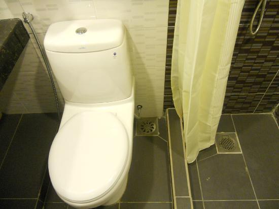 Syaz Meridien Hotel: wc