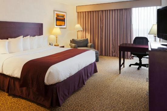 DoubleTree by Hilton Hotel Dallas - Richardson: King bedroom