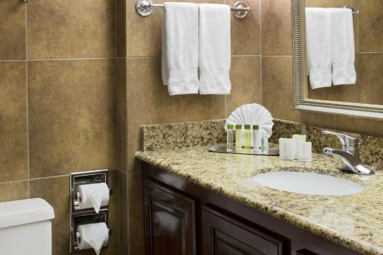 DoubleTree by Hilton Hotel Dallas - Richardson : Bathroom