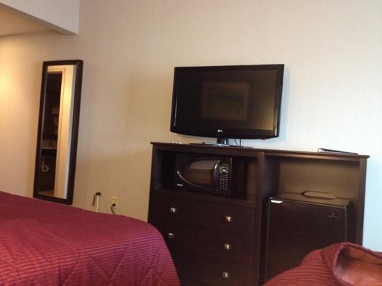 Comfort Inn Rehoboth Beach: TV