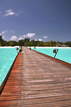 Kanuhura - Maldives: Main Jetty