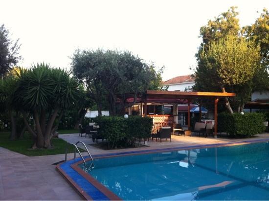 Hotel Terinikos: la piscina e il bar