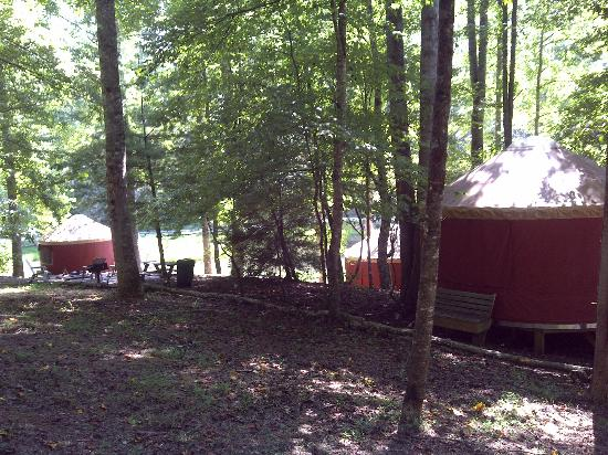 Falling Waters Adventure Resort: View of grounds from the area near Yurt #4