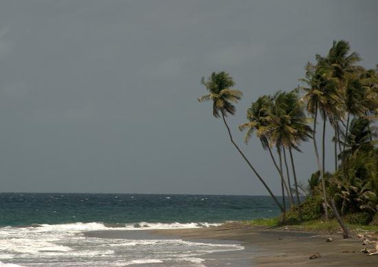 Treetops Villa Guest House: Sun, sea and sand.