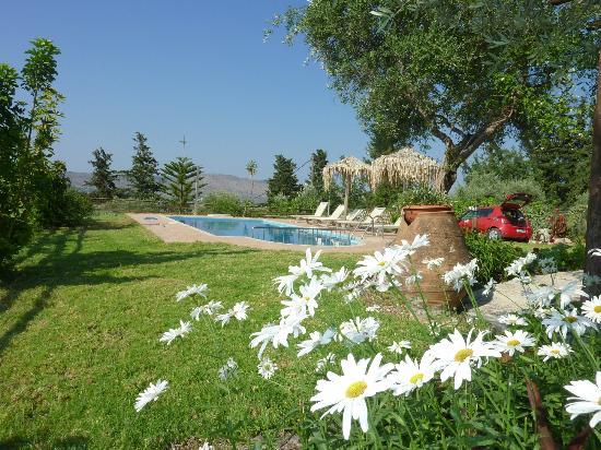 Villa Petra: The garden