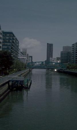 Comfort Hotel Tokyo Kiyosumi Shirakawa: 墨田川
