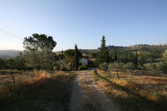Le Mandrie di Ripalta: surroundings