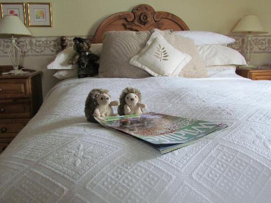 Brockville Bed and Breakfast: Tino and Pickle surprised us with some humorous whimsy.