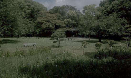 Kiyosumi Teien: 静