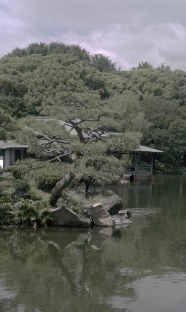 Kiyosumi Teien: 松