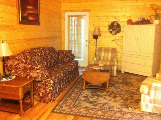 Cedar Rock Cabins: Living Room in Violet's Song