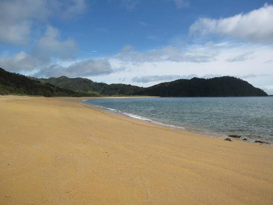 Totaranui Campground: Strand