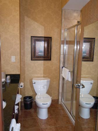 Best Western Plus Fredericton Hotel & Suites : Bathroom with rain shower