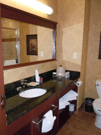 Best Western Plus Fredericton Hotel & Suites : Bathroom with rain shower