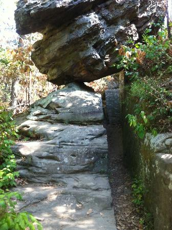 Rock Formations at Giant City State Park (23 miles from Cedar Rock Cabins)