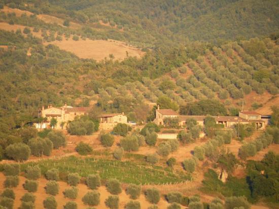 Agriturismo Grossola: Vista panoramica della Grossola dalla collina di Montalcino