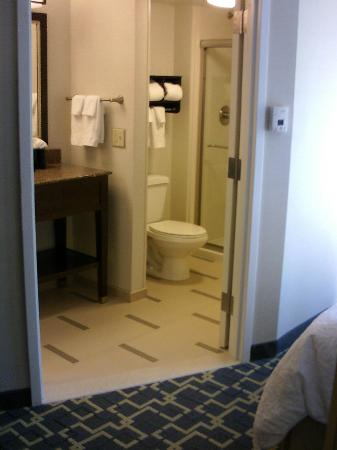 Hampton Inn by Hilton Shelton: Clean bathroom