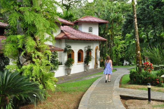 Casa Corcovado Jungle Lodge照片