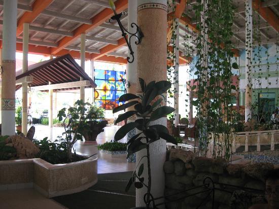 Le lobby avec toutes ses plantes