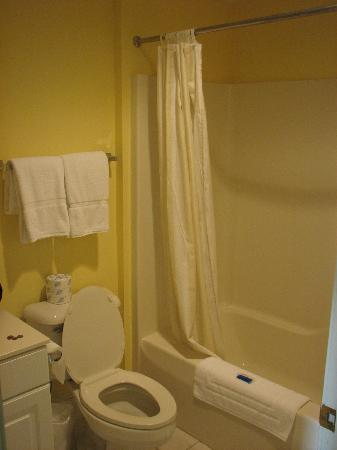 The Inn at Stonecliffe: Bathroom in suite