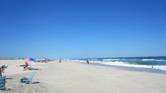Assateague State Park Camping: The beach mid-day