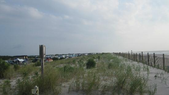 Assateague State Park Camping : Standing on the dune that divides the ocean from the campground