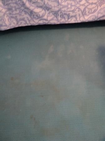 هوتل توري دي بوربوني: plastic dirty floors 