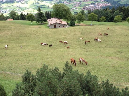 dalla terrazza - Bild von rifugio san lucio, Clusone - TripAdvisor