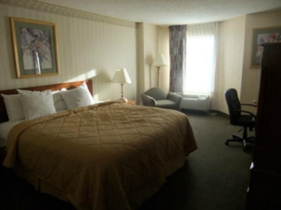Comfort Inn Pentagon City: King room