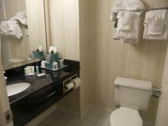Comfort Inn Pentagon City: Washroom