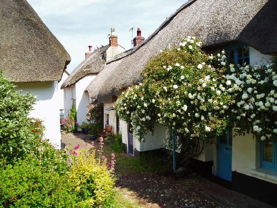 The Cottage Hotel: Thatched Cottages Inner Hope