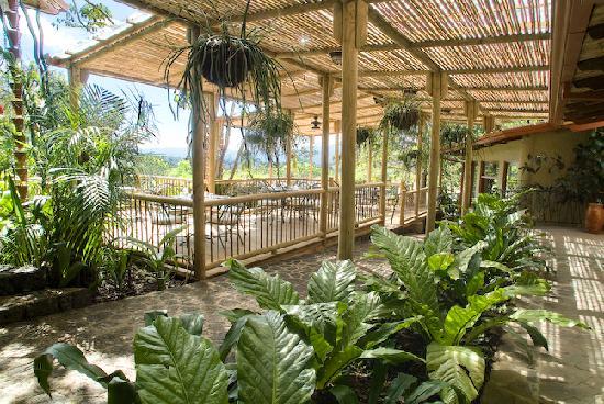 Finca Rosa Blanca Coffee Plantation & Inn: The outdoor restaurant
