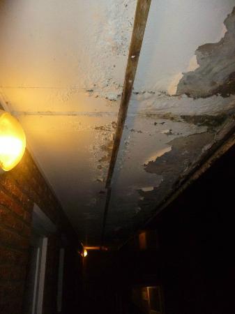 Almabel Meeting And Holiday: plafond ingang