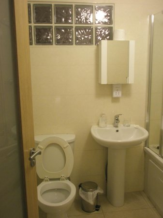 Brookhill Serviced Apartments: Depressing bathroom