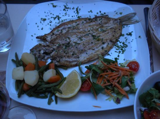 Antico Pozzo Restaurant : The delicious lake whitefish (of the day)