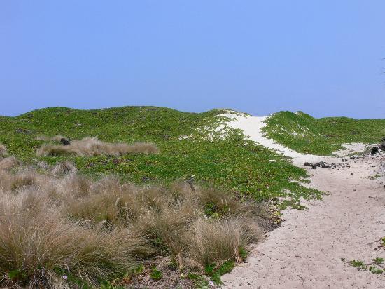 Makalawena/Pu'u Ali'i: The dreaded sand dunes
