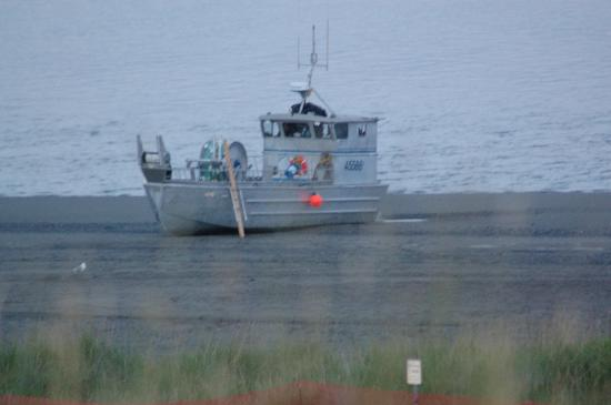 Beluga Lookout Lodge & RV Park : Boat stuck on beach