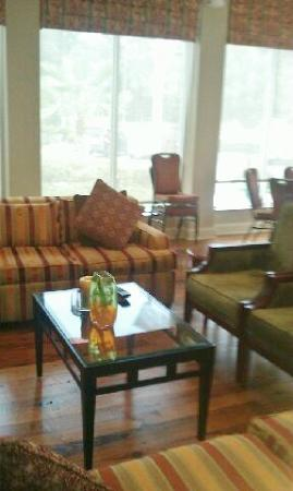 Hilton Garden Inn Savannah Midtown : Cozy seating area in lobby