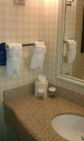 Hilton Garden Inn Savannah Midtown : Nice and clean bathroom!