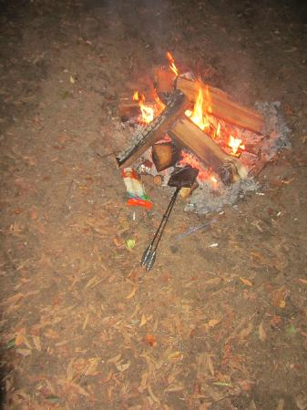 Red Oak Campground: Small hole in ground for fire