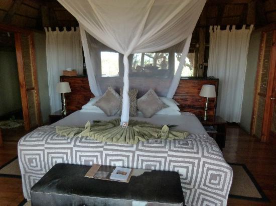 Kwetsani Camp: #5 tent