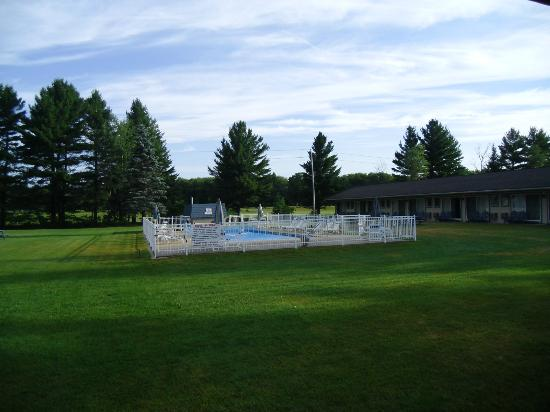 Country Club Motel: the pool