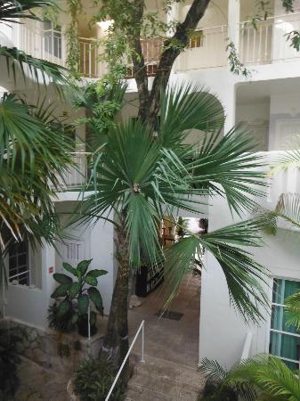 Coco Rio Playa del Carmen: Courtyard