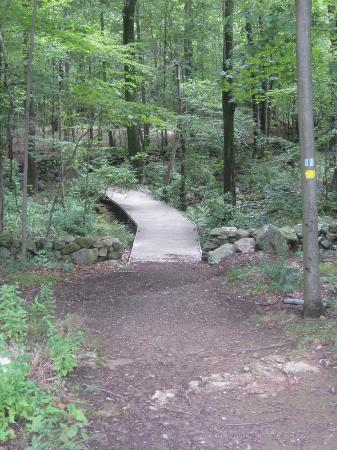 Wilton, CT: Nature Trail