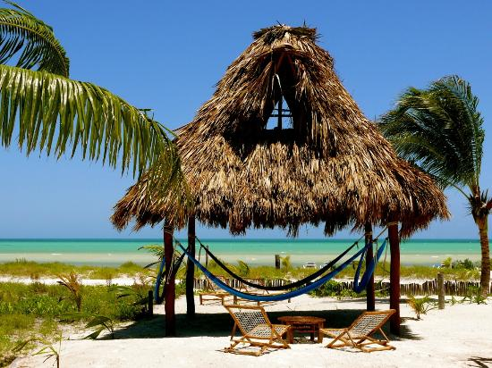 Hotel Casa Palapas del Sol: Palapa with hammocks for a shady place on the beach